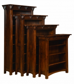 Manioba Bookcase Product