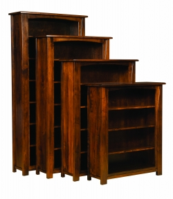 Mondovi Bookcase Product